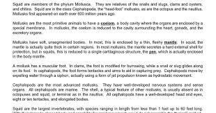 squid dissection procedure google docs