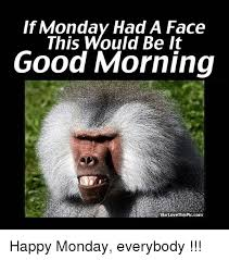 Funny Memes About Monday - if monday had a face this would be it good morning via love