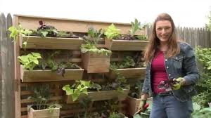 how to plant a living wall garden on a fence youtube