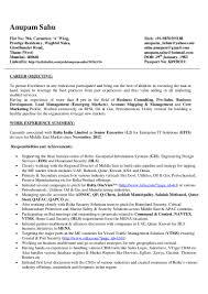 Cognos Consultant Resume Pre Sales Consultant Resume India Youtuf Com