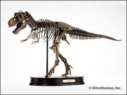 dinosaurs lessons tes teach
