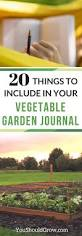 Natural Pesticides For Vegetable Gardens by 20 Things To Include In Your Vegetable Garden Journal You Should