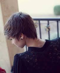 pictures of back pixie hairstyles back pixie cut