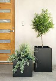 terrace square planters planters plants and steel