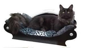 canapé pour chien grande taille canapé design pour gros et chien moyen royal canapé