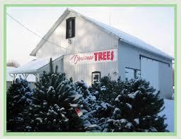 medina christmas tree farm