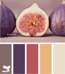 color palette maker google search color schemes pinterest