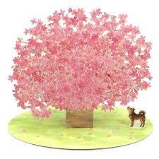 fantastic cherry blossom pop up decorative greeting card premium