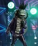 Image of Turtle Masked Singer