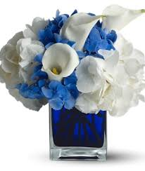white and blue flowers beautiful blue and white flowers about fdbdbdbefbbb on uncategorized