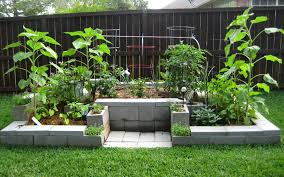 15 creative cinder block raised garden beds garden lovers club