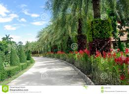 beautiful road with trees royalty free stock images image 32387829