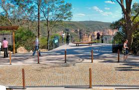 blue mountains native plants tourist attractions things to do blue mountains australia