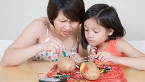 potato light bulb experiment for kids sciencing