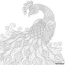 decorative peacock anti stress coloring black
