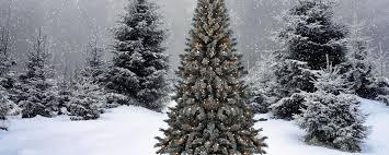 download wallpaper 2560x1024 trees garland star snow winter