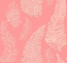 coral color 164 best colors coral peach images on pinterest coral colors
