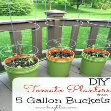 large outdoor plant pots uk large planters pots 17 best ideas
