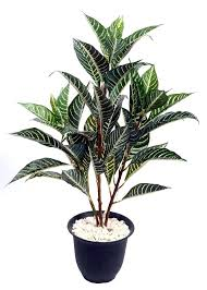 artificial small rubber plant set of 3 free delivery palm tree