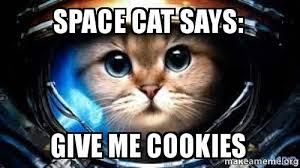 Meme Space - space cat says give me cookies space cat make a meme