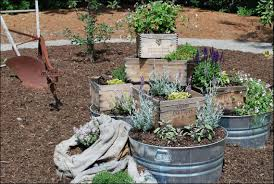 Decorative Vegetable Garden by Interior Cq Photo Smart Of Gracious Container Vegetable Chic
