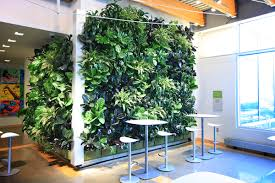 living room vibrant tropical indoor living wall how to make a