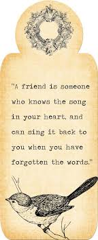 12 best friends forever images on best friends bffs