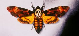 the silence of the lambs butterfly moth and skull illuminati