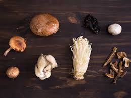 Types Of Garden Mushrooms - the serious eats mushroom shopping guide serious eats
