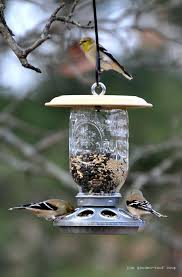 sunflower seed bird feeder feeder bird feeders good for