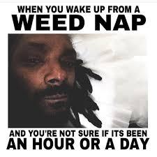 Friday Smokey Meme - new funny meme smokey from friday weed humor stoner humor