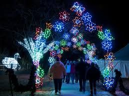 final days of wild lights at the detroit zoo royal oak mi patch