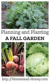 412 best edible gardening images on pinterest gardening garden