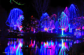 Zoo Lights Phoenix Zoo by Grandma U0027s Budget Vacations Happy Holidays From The Roaming Granny