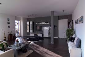 Jugend Wohnzimmer Einrichten Wohnung In Grau Gemütlich Auf Moderne Deko Ideen Zusammen Mit 2