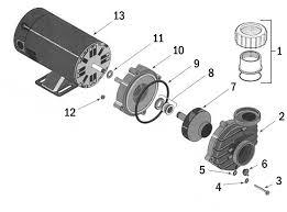 sta rite dura jet spa pump dj series replacement part schematic