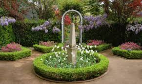 hedge ideas landscape traditional with ornamental trees wisteria