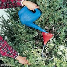 handy tips and hacks for christmas trees family handyman