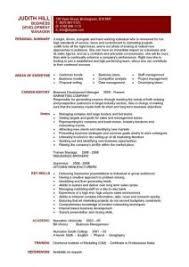Bussiness Resume Download Business Resume Haadyaooverbayresort Com