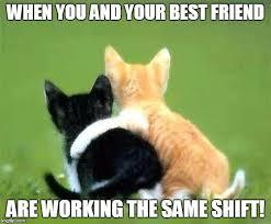 Work Friends Meme - friends imgflip
