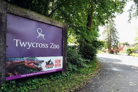 Zoo Increases Sales And Enhances Twycross Zoo Is Taking On Staff Here S How To Apply Leicester