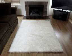 Area Rugs At Ross Stores Bedroom Incredible Fluffy Area Rug Rugs Ideas With Regard To White
