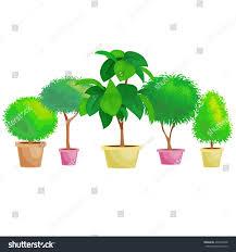 indoor office plants pot stock vector 492296398 shutterstock