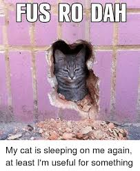 Fus Ro Dah Meme - fus ro dah my cat is sleeping on me again at least i m useful for