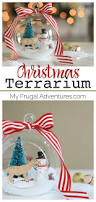 easy christmas craft christmas terrarium keepsakes simple