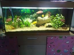 Wohnzimmertisch Aquarium Couchtisch Aquarium Gebraucht 10313820170518 U2013 Blomap Com