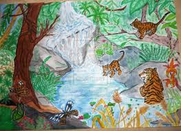 drawn jungle tropical forest pencil color drawn jungle
