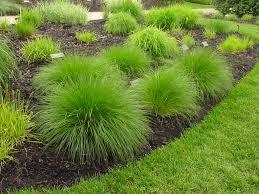 ornamental grass garden designs garden design garden design with