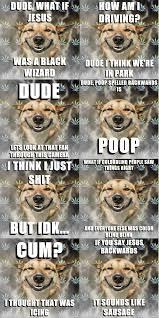 Stoned Dog Meme - stoner dog collection 1