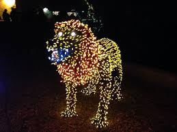 phoenix zoo lights prices even at zoo lights you ve gotta have animals picture of phoenix